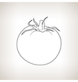 Tomato in the Contours on a Light Background vector image