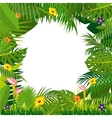 Jungle background with palm tree leaves vector image