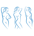 woman sketches vector image