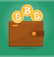Bitcoin wallet digital crypto currency sign vector image