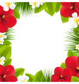 Green Border With Tropical Elements vector image vector image