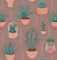 Seamless patten with cactus and succulent plants vector