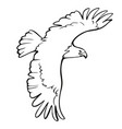 eagle icon isolated sign symbol vector image