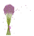 Purple Lavender Flower Background vector image