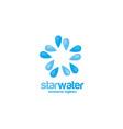 star water logo concept vector image