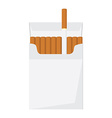 Cigarette pack vector image