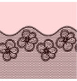 Decorative lacy border vector image