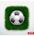 Icon football ball in green grass vector image