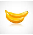 Banana fruit icon vector image