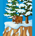 grizzly bear on snow mountain vector image