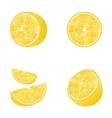 Set of Fruit Lemons Isolated vector image vector image