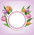 card tulip flower decoration template vector image