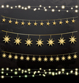 Garlands with Stars Decoration Set vector image