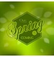Stylish Spring seasonal card design vector image vector image