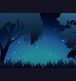 scene of forest at night vector image vector image