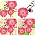 cherry blossom flowers vector image