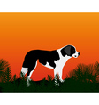 dog gazing into the distance vector image