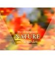 Blurred floral background with garden design vector image