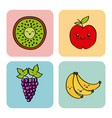kawaii fruits design vector image