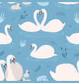seamless pattern with white swans singles and vector image