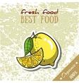 Healthy Food Lemon vector image