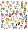 set of cats and kittens vector image