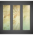 set of vintage banners with grunge cardboard vector image