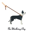 Great Dane with a leash - on white background vector image