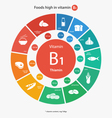 Foods high in vitamin B1 vector image