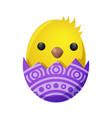 newborn chicken hatch from shell decoration vector image