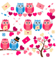 Love Owls vector image