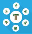 flat icon nature set of baobab maple tree and vector image