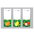 Fruit OLA Stand vector image