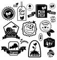 Eco labels black vector image