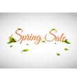Spring sale background vector image