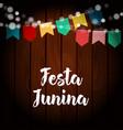 brazilian festa junina greeting card invitation vector image