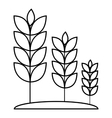 Wheat germ icon outline style vector image