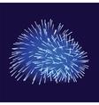 Blue fireworks on dark background vector image vector image