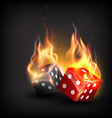 burning dice vector image
