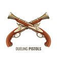 dueling pistols with luxurious vintage design of vector image
