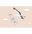 Flying stork with a newborn vector image