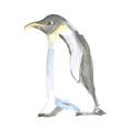 Watercolor cute pinguine in vintage style vector image