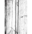 Dry Wooden Texture vector image vector image