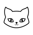 Face cat fluffy lovely animal outline vector image