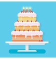Happy Birthday cake with candles vector image