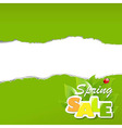 Green Torn Paper Borders Sale Poster vector image vector image