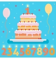 Happy Birthday cake with numbers candles vector image