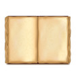 old opened book isolated vector image