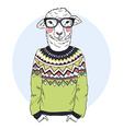 lambl dressed up in jacquard pullover vector image