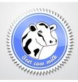 Cows logo vector image vector image